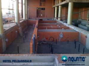PELEGOZALO (1)